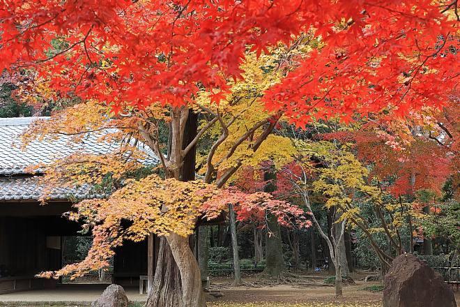 Heirinji1817_x660.jpg