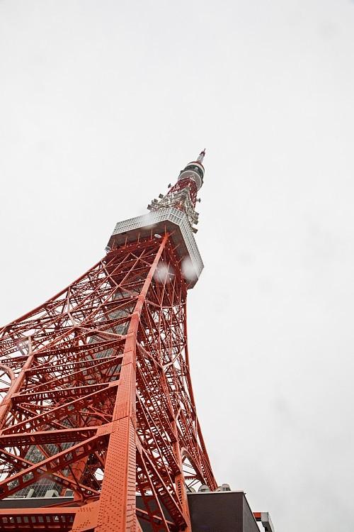 Tokyo1504_y8.jpg