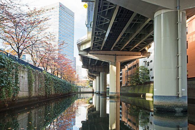 Tokyo1611_x660.jpg