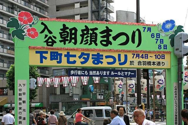 asagao0900_x640.jpg