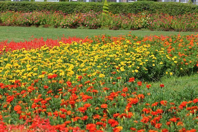 flowerpark1001_x640.jpg