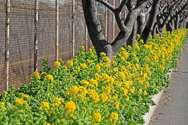 spring1301_x660.jpg