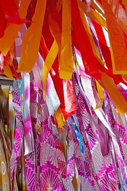 tanabata1509_y8.jpg